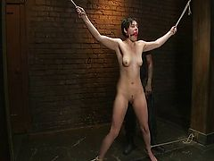 Spanking and lashing in the chamber