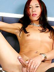 Asian Tranny Penis Jacking off